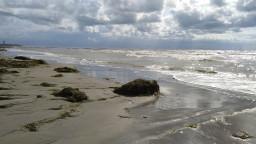 Strandwetter